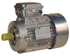 Ex-Motoren Bild Blecher